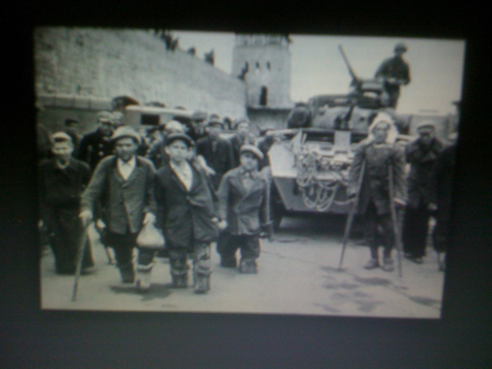 blacks in the holocaust - photo #6
