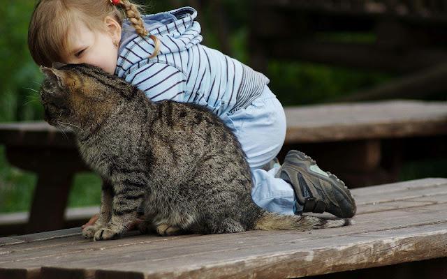 Kind geeft kat een knuffel