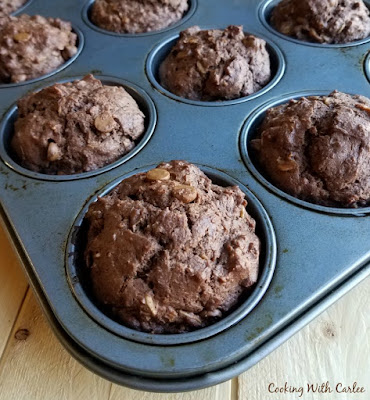 chocolate sourdough muffins with peanut butter chips in muffin pan