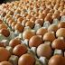 Fakta atau Mitos, Benarkah Telur Berbintik Mengandung Penyakit