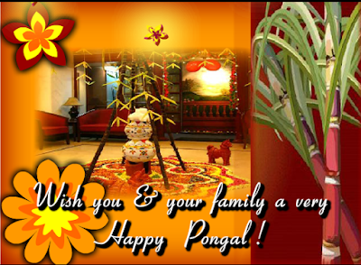 Happy Pongal Images, Greetings, HD Pictures