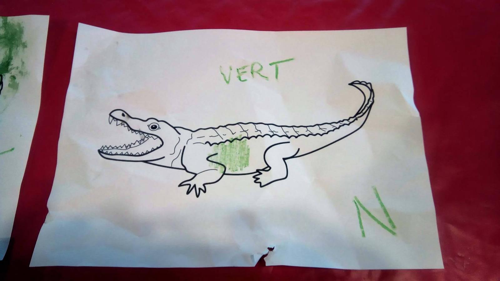 nounou pascale  quelle est la couleur du crocodile