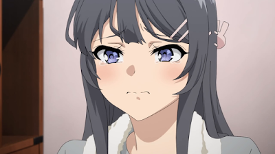 Seishun Buta Yarou wa Bunny Girl Senpai no Yume wo Minai Episode 10 Subtitle Indonesia
