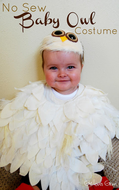 https://www.girllovesglam.com/no-sew-baby-owl-costume/