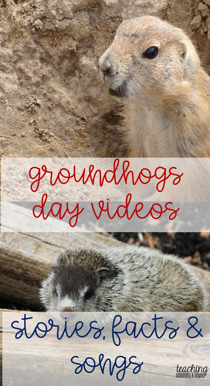 The History of Groundhogs Day