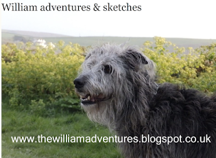 Light-hearted sketching fun with William's blog ⤵︎