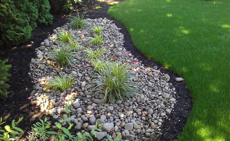 Tips, gardening tips