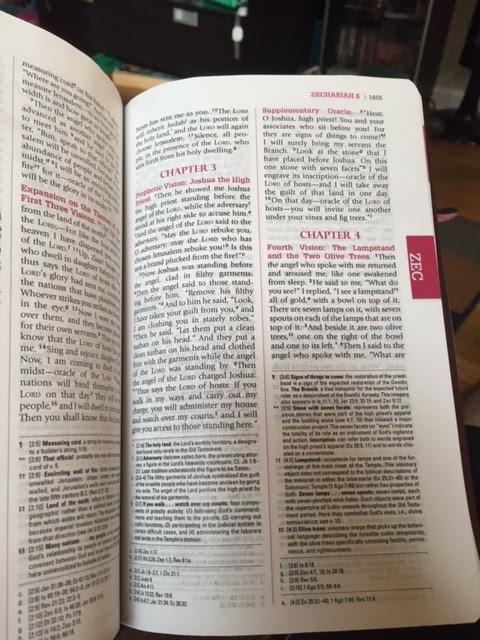 Catholic bibles: usccb publishing nabre: personal edition.