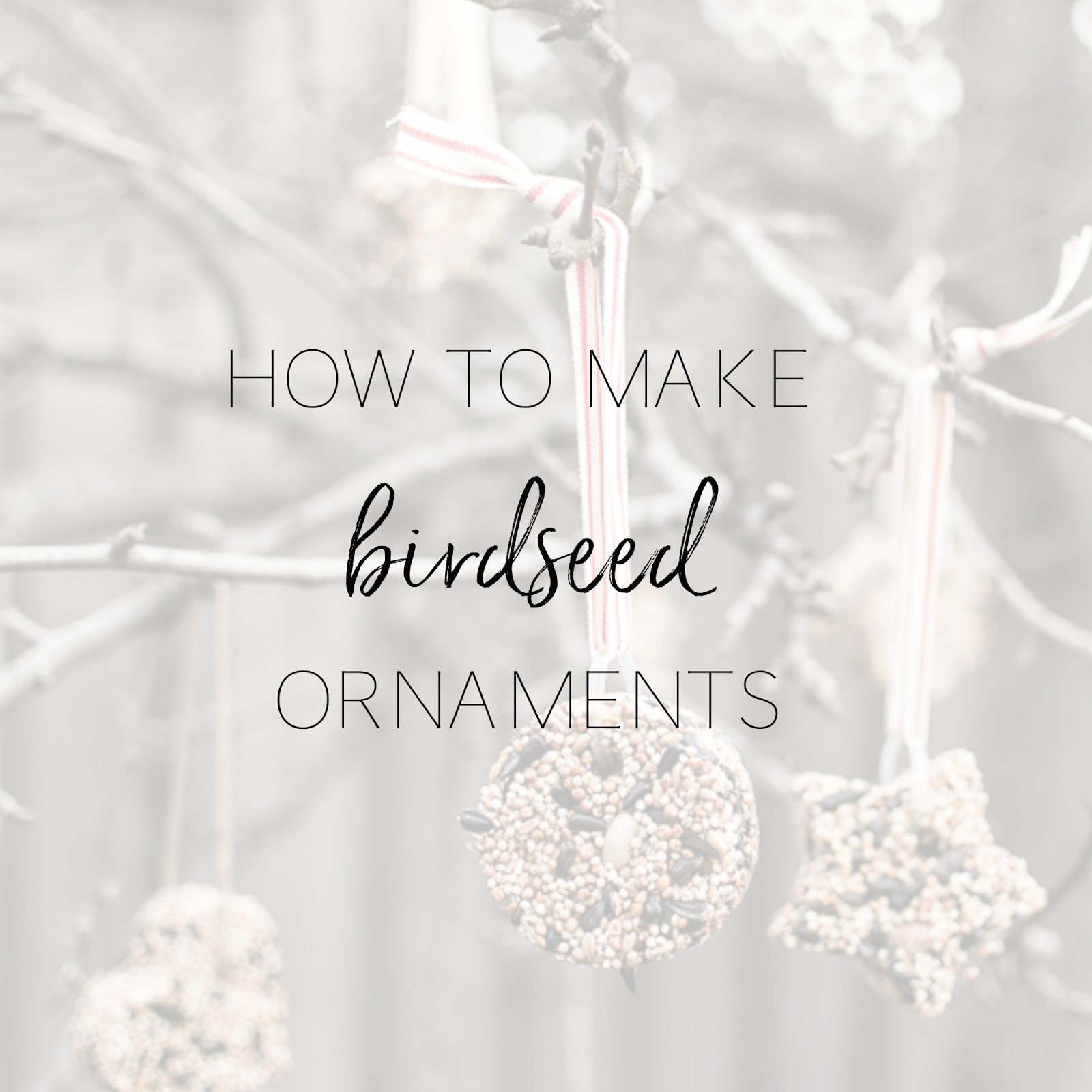 How to make birdseed ornaments personally andrea how to make how to make birdseed ornaments birds will love these pretty ornaments decorating your backyard trees solutioingenieria Image collections