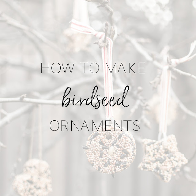 How to make birdseed ornaments | Birds will love these pretty ornaments decorating your backyard trees.  A fun craft to make with kids! | personallyandrea.com