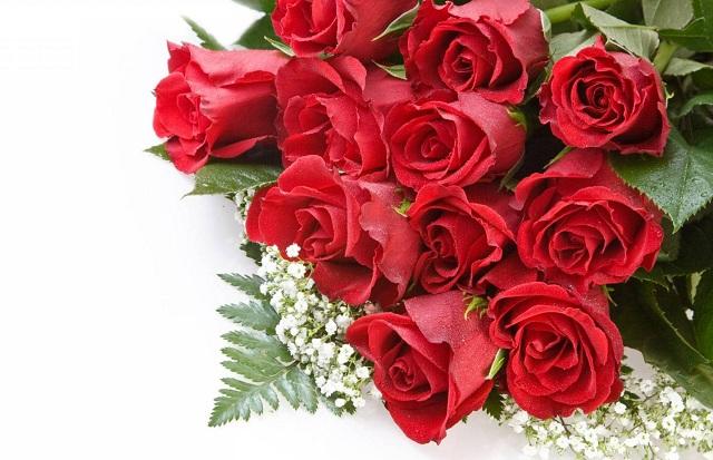 Kết quả hình ảnh cho bó hoa hồng 20 10