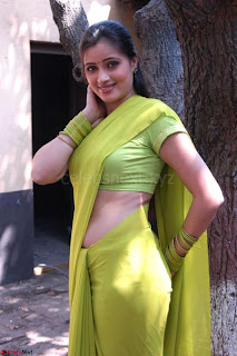 Bollywood Actress in Saree Spicy Pics 21.jpg