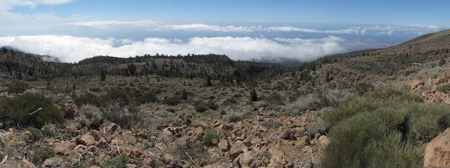 Mar a Cumbre - PR-TF-86 - Tenerife - Islas Canarias