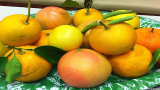 Fairchild tangerine fruit images wallpaper
