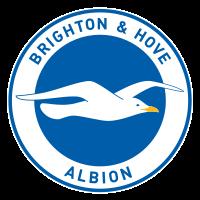 Football Team-Club Brighton & Hove Albion F.C. Nickname - Soccer Nickname