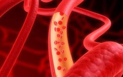 Aliran darah manusia