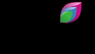 watch Rishtey TV on Satellite