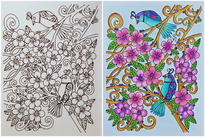 Adult coloring before and after page with magical birds