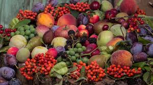 Makanan Yang Baik Bagi Pesakit Asid Urik