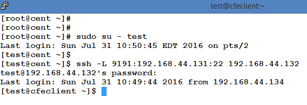 Use SSH/SCP to access a remote server through an