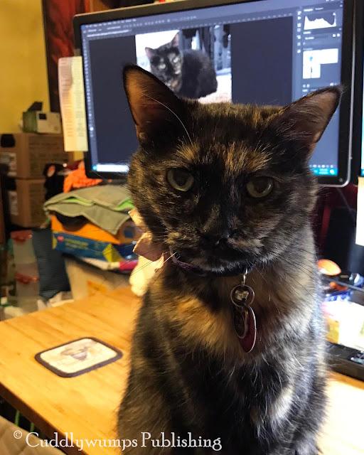 Real Cat Paisley Sunday Selfie