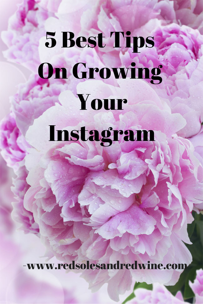 5 Best Tips On Growing Your Instagram