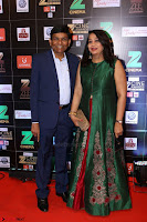 Bollywood Celebrities on the Red Carpet Of Zee Cine Awards 2017 Exclusive 096.JPG