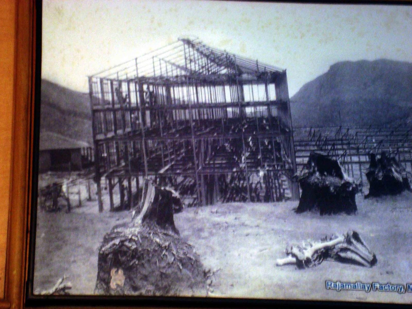 Old Munnar Photos Dhanushkodi Tragedy 1965
