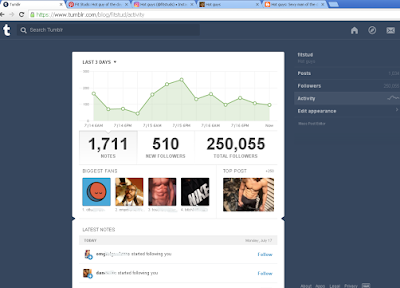 250k Tumblr followers