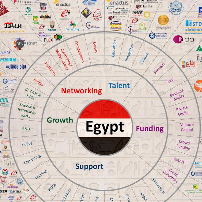 EGYPT ENTREPRENEURHIP ECOSYSTEM INFOGRAPH