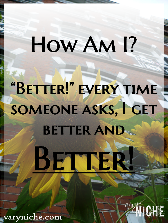 """Better! Every time someone asks, I get better and better!"" Text over photo of Sunflower taken by Danny Booth in Amsterdam August 2009."