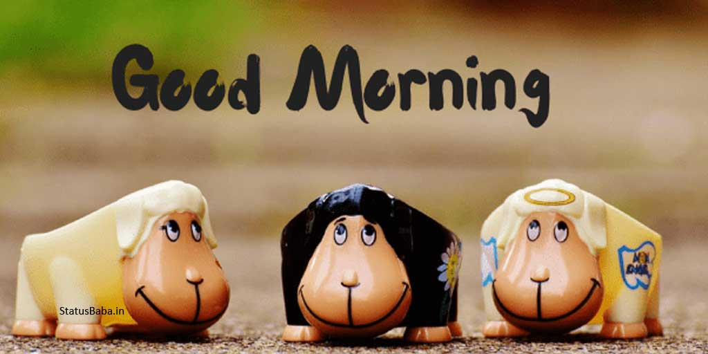 Funny Ways To Say Good Morning Over Text Statusbaba