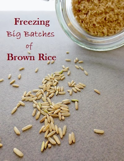 http://poorandglutenfree.blogspot.com/2013/11/how-to-freeze-brown-rice-gluten-free.html