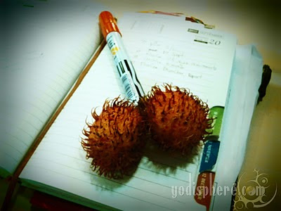 Rambutan fruit funny photo