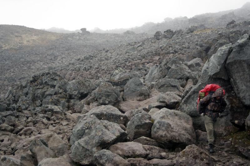 склон ичинского вулкана камчатка