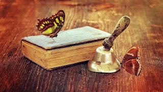 borboleta pousando sobre um livro velho