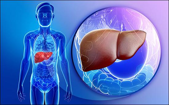 hemangioma of the liver, liver hemangioma, treatment of liver hemangioma in ayurveda, ayurvedic treatment for liver hemangioma, herbal remedies for liver hemangioma, liver hemangioma natural treatment
