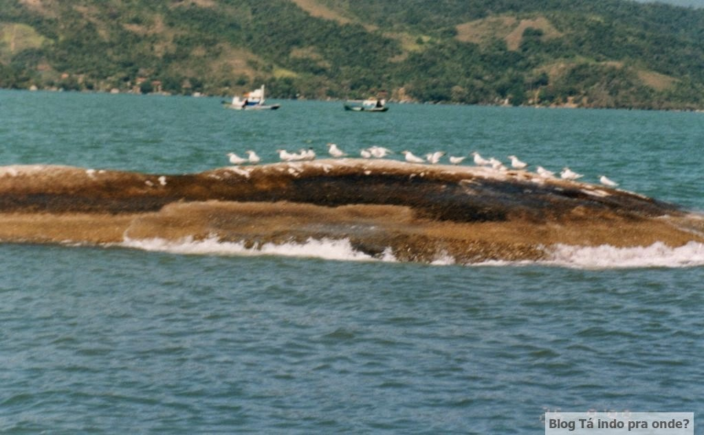 passeio de barco em Paraty