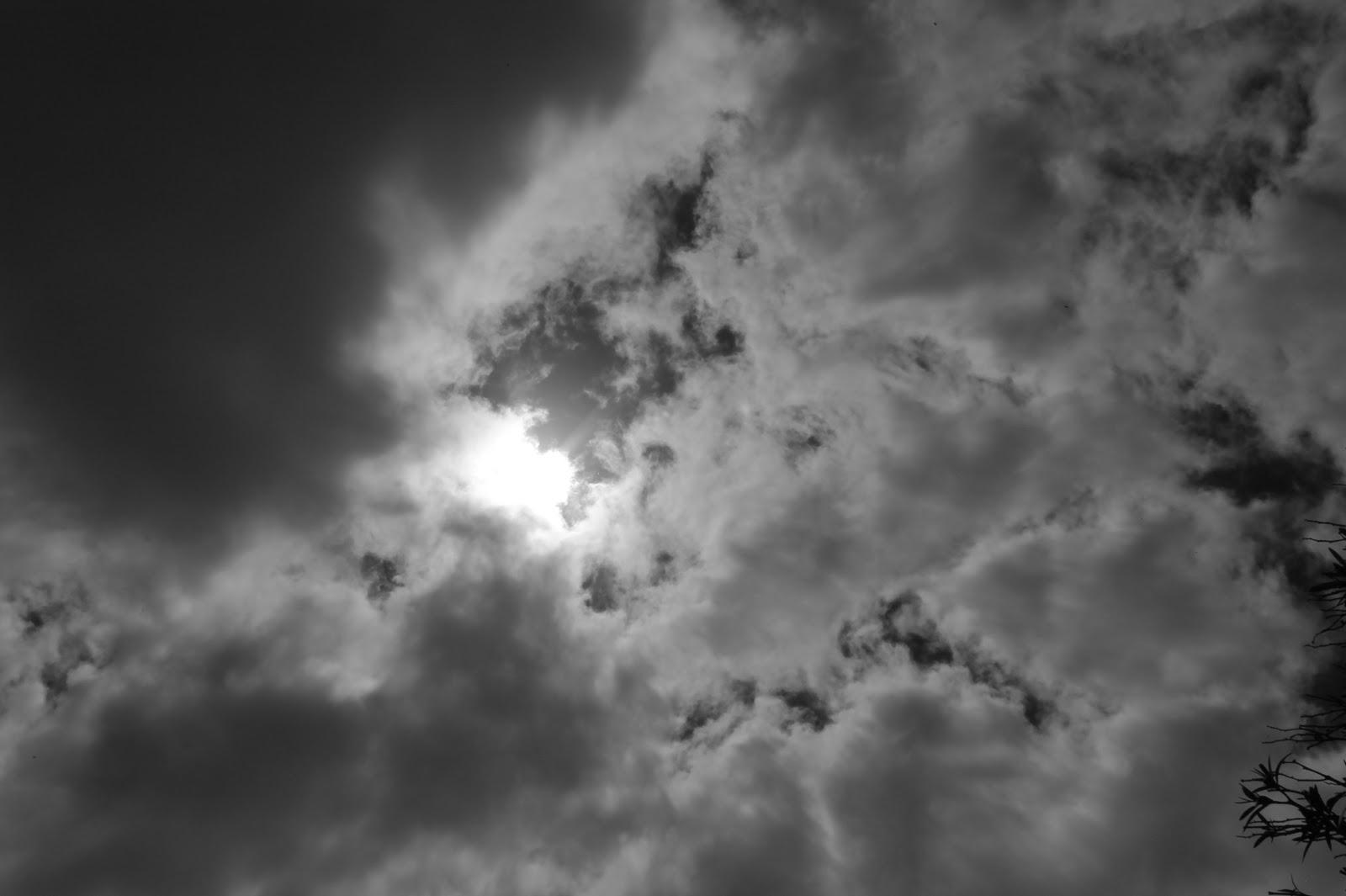 Ojos Al Cielo Viciados De Nulidad