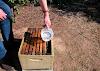 Παλιός μελισσοκόμος λέει για το εξωφρενικό που γίνεται βάζοντας στο σιρόπι...