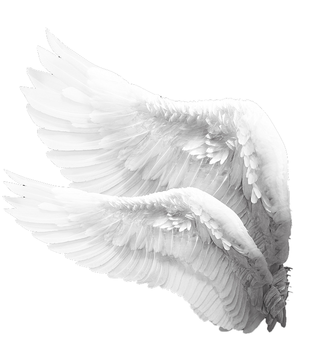 render alas de ángel