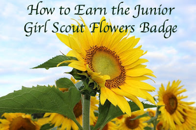 Here you will find a complete meeting plan for your troop to earn the Junior Girl Scout Flowers badge.