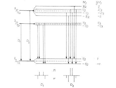 zeeman splitting of D1 & D2 lines