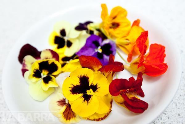 Las Flores Tambien Se Comen