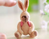 http://fairyfinfin.blogspot.com/2015/07/cute-tiny-crochet-rabbit-doll-amigurumi.html
