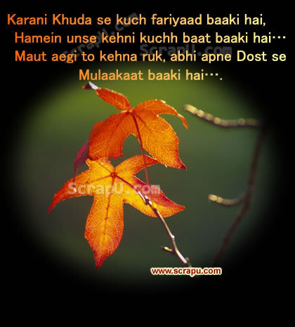 Doston Ke Liye Shayari Graphics