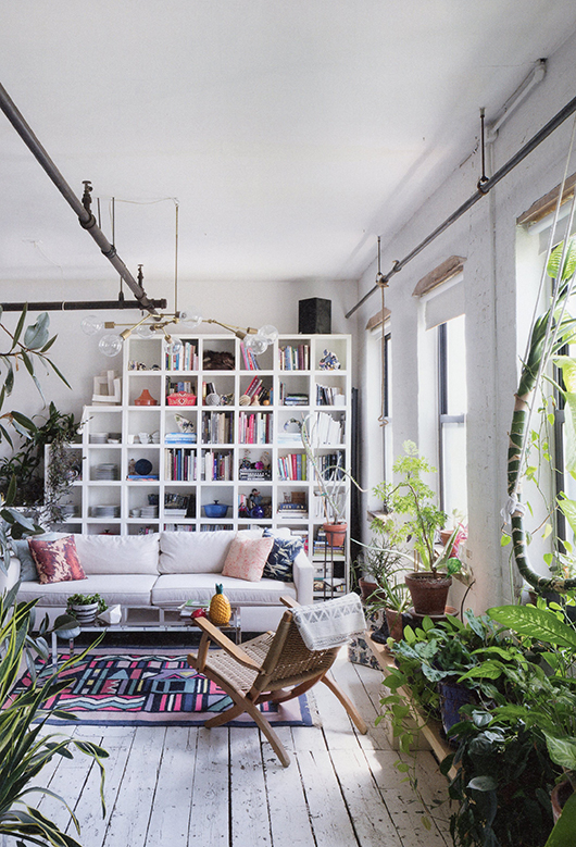 Plants and Books Make a Cozy Living Room