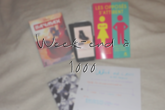 Week-end à 1000, bilan - a Thousand lives with books