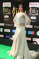 Sonal Chauhan in a stonework Floor Length Silver Designer Gown at IIFA Utsavam Awards March 2017 015.JPG