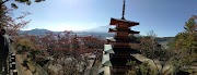 Momiji here i come!!! Day 6 - Mt Fuji (Kawaguchiko dan Chureito Pagoda)